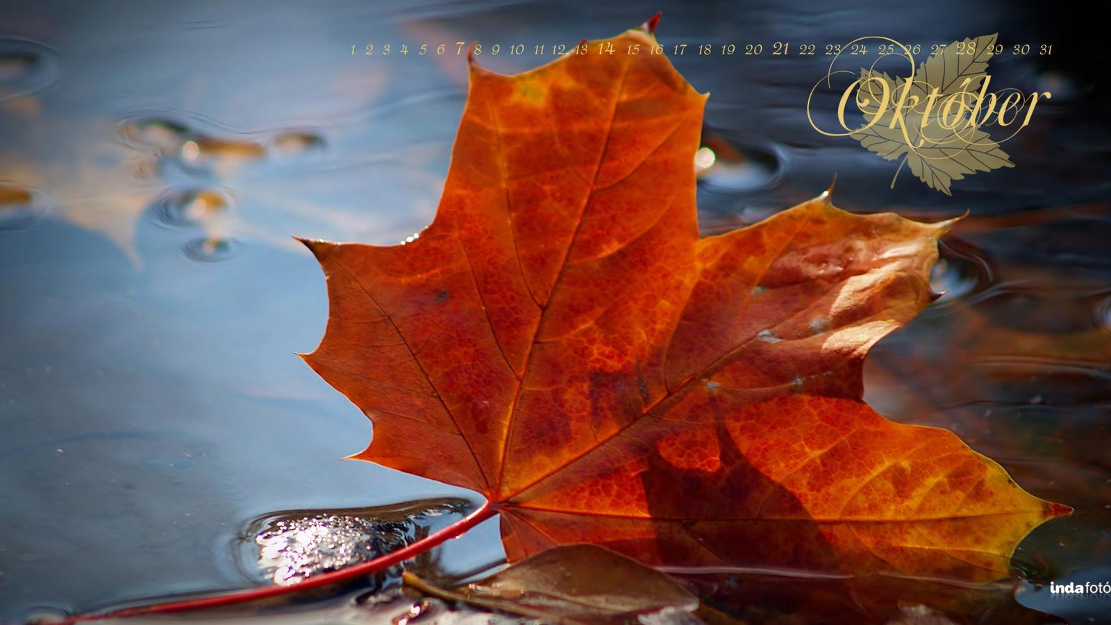októberi naptár háttérkép Októberi áreső októberi naptár háttérkép